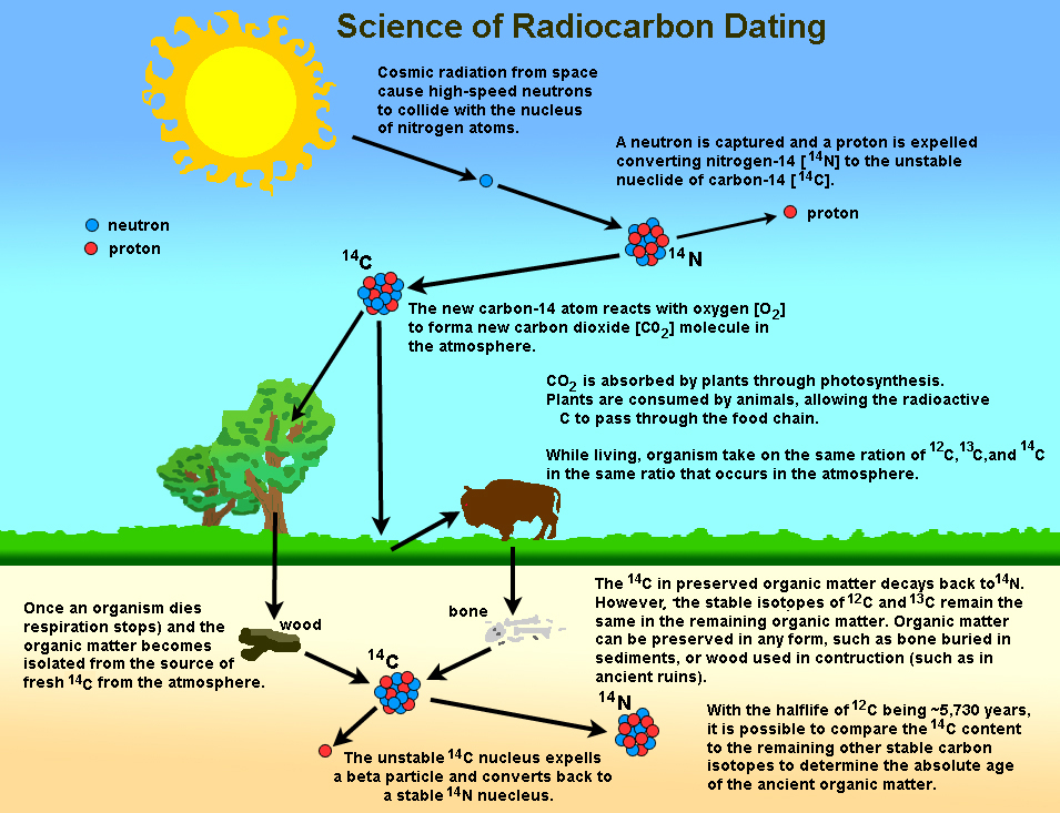 GotBooksMiraCostaedu – Radioactive Dating Worksheet