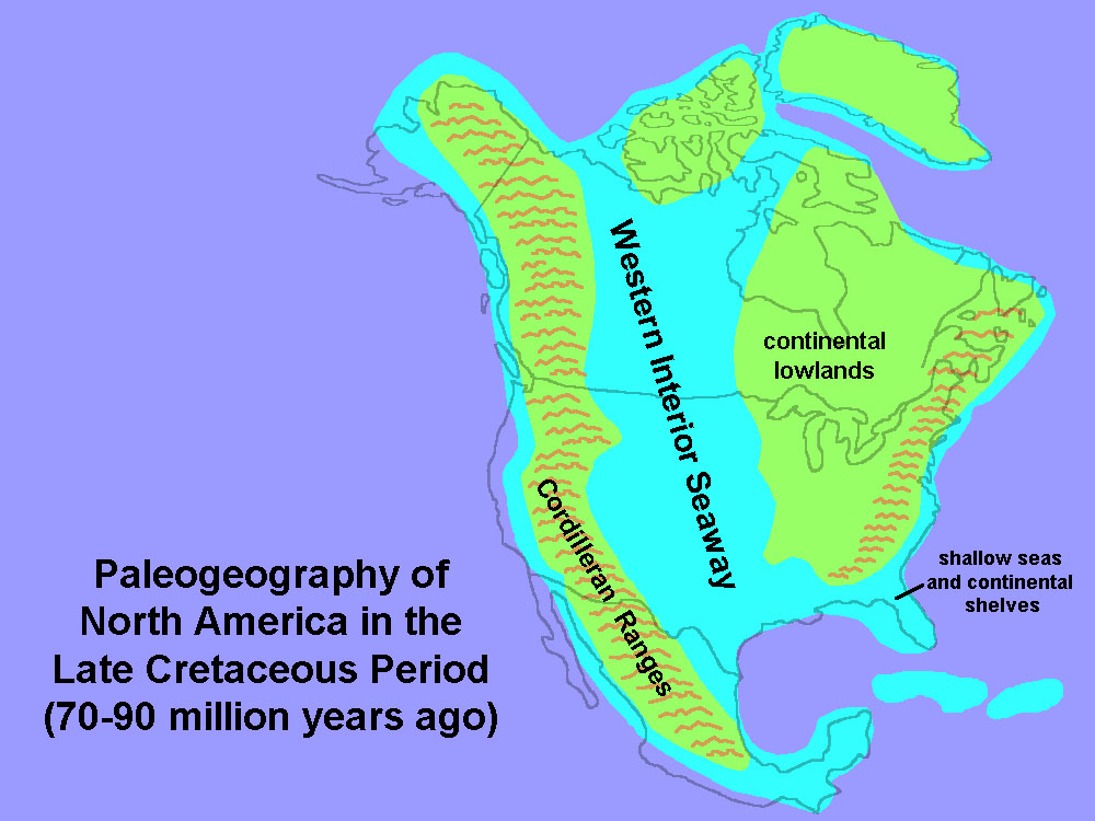 The Weight Of The Ranges And The Sediments They Contributed Worked To Push  Down The Mid Continent Region, Allowing The Western Interior Seaway To  Flood ...