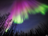 The aurora borealis are streaming light displays lights in the northern hemisphere.